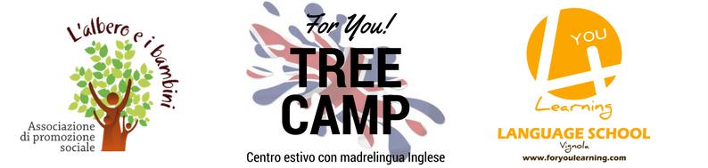 Tree English camp 4You